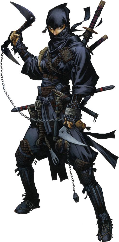 Ninja - Reiko
